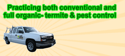 Practicing both conventional and full organic- termite & pest control
